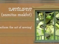 ZATSHLIPIT - sowing seed
