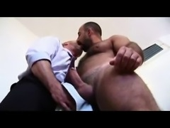 Two hairy bears fucking hard.