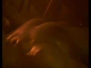 Leonine Smith sex scene in Underbelly