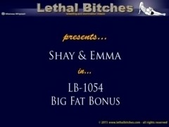 lb1054: Big Fat Bonus free