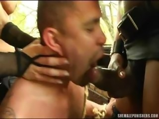 Shemales Dominate Submissive Guy
