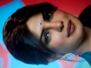 Bollywood Priyanka Chopra By HUNK