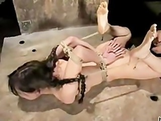 Hogtied Sasha Grey