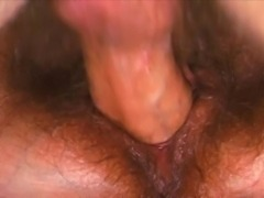 hairy pregnant bitch vs cock