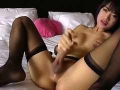 Perfect Ladyboy Adventures of sexy Bee