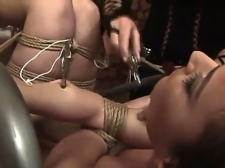 Bounded Kitty Cole is getting a lusty punishment from her sexy mistress Kathia Nobili