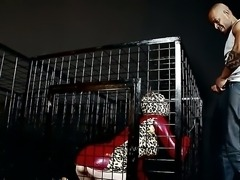 Obedient latex kitty likes to live in the cage and suck a big black cock of...