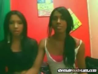 Lesbian Shemale Girlfriends cocksuckers free