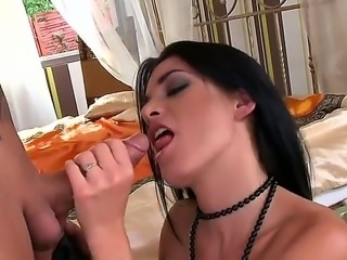 Sexy gorgeous brunette babe gives guy steamy blowjob before getting her cunt...