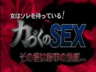 Japanese Sex Life 175