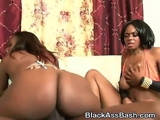 Bit Booty Black Bitches take Turns Ridng In Threesome