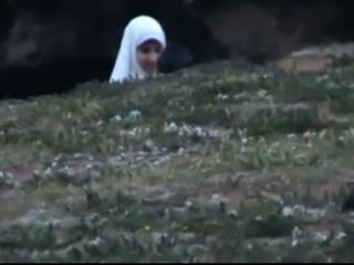 arab palstein2
