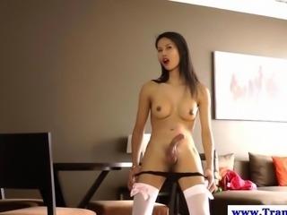 Ladyboy amateur shemale pleasures herself