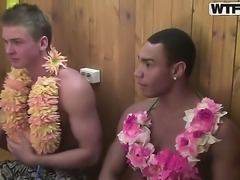 Amateur Hawaiian college party with Angel, Cofi, Dulsineya, Tanata and Yuki
