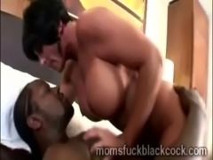 Really big stacked cougar gets smashed by a massive black piece free