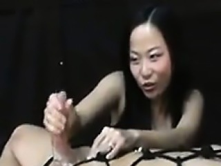 Sexy Shemales Compilation