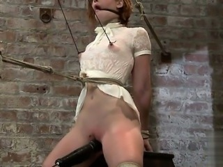 Sexy girl blowjob swallow