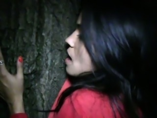 Beautiful amateur banged in the park at night