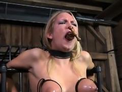 Italian wife ass lick