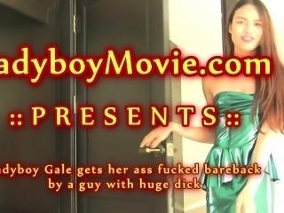 Young Ladyboy Gale Fucked Bareback
