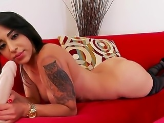Penelope Stone is a lovely solo girl that is sticking her fingers inside her pussy. She rolls around on the sofa in this video. She also sucks a large sex toy.