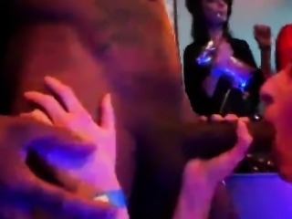 Horny cuties get totally wild and stripped at hardcore party