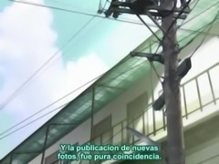Yama Hima No Mi 02