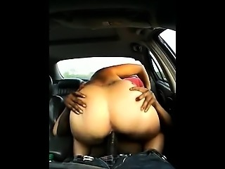 Redbone driving within the vehicle