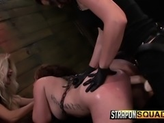 Hotties Aryah May, Brooklyn Daniels, and Mila Blaze play with dildos in a...