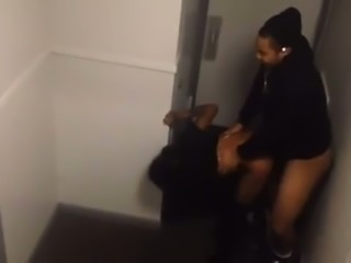 Ardent black nympho was nailed doggy style right in the toilet