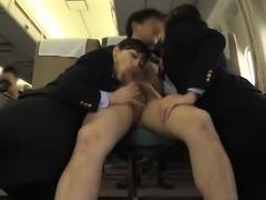 Hospitality Also Shy Oma Co Aviation 4 Reverse