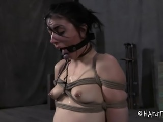 Bondage brunette nicely spread legs when getting drilled with toy in BDSM