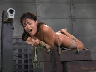 Ava Dalush is great at enduring all sorts of sex BDSM games