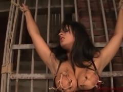 Busty Arabian girl punished.