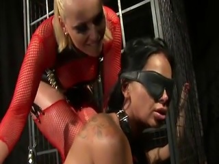 Dominated euro punished by her master