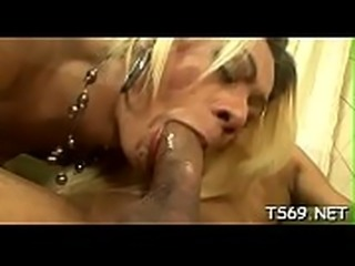 Transsexual xnxx