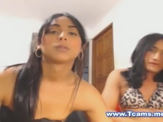 Hot Tranny Couple Anal Fuck and Pie