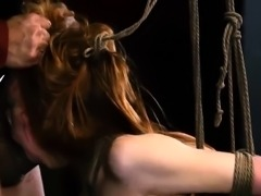 Hd extreme dildo anal and tall girl dominates short guy Sexy