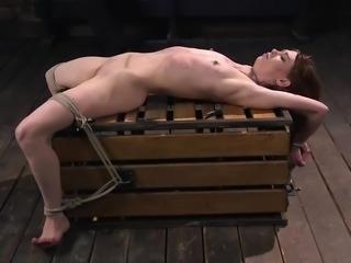 alexa nova gets whipped and tortured