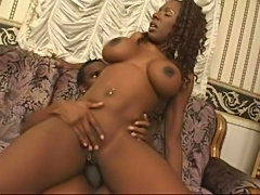 Kelly Starr My Thick Black Ass12 free