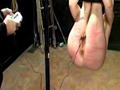 Electro whip  free