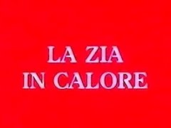 La Zia In Calore part 1