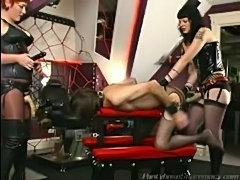 Sissy sex slave  free