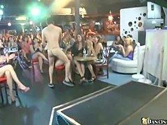 New Male Stripper (Dancing Bear)