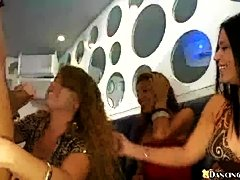 70 horny girls packed into the club (Dancing Bear)