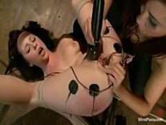 Wired pussy - lindy lane  free