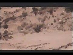 O.Q. Corral - Teo69 - xHamster.com
