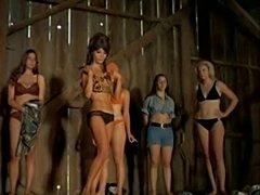 70s film part four  free