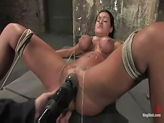 Charley chase: Hogtied Intense orgasms