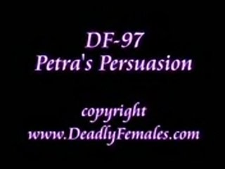 Df097-wm-cq  free